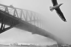 """The Sydney Harbour Bridge or """"Coathanger,"""" as the locals call it, was the city's best-known landmark prior to construction of the Opera House. Supported by massive double piers at each end, it was built in 1932 and remains the world's largest steel arch bridge, connecting the harbor's north and south shores in a single curve rising 134 m above the water."""