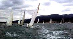 #Sailing cup at Marina di Scarlino