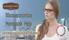 economics help online chat