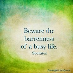 'Beware the barrenness of a busy life.' Socrates. Be conscious of all that you love and treasure. Do not lose it because you are too 'busy'.