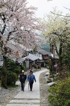 The Nakasendo Way: The Kiso Road is a fully guided, Level 3 walking tour. A 4 day, 3 night tour starting in Nagoya Station and finishing in Nagoya.