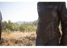 Harleysti, siete pronti ad affrontare l'inverno? Ecco la collezione Winter 2014 di Harley-Davidson. http://moto.infomotori.com/articolo/abbigliamento/24060/la-collezione-abbigliamento-moto-invernale-2014-di-harley-davidson/