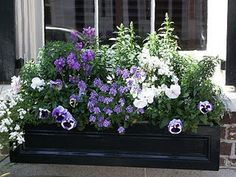 Charleston High Street window box by wes3575 on Etsy