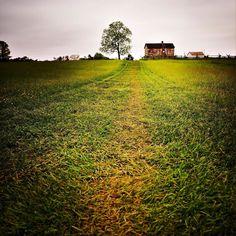 American Civil War Farmhouse #american #civilwar #farm #farmlife #field #battlefield #farmhouse #landscape #tree #house #path #road #grass #instacool #instagood #instalike #sony #a7s #sonyimages #travel #manassas #virginia #followme