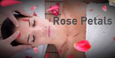 Rose Petals falling