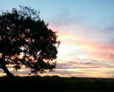 Ao amanhecer.