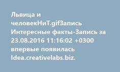 Львица и человекНиТ.gifЗапись Интересные факты-Запись за 23.08.2016 11:16:02 +0300 впервые появилась Idea.creativelabs.biz.  http://idea.creativelabs.biz/%d1%81%d0%b5%d0%b9%d1%87%d0%b0%d1%81-%d0%b2-%d0%bc%d0%b8%d1%80%d0%b5/interesnye-fakty-zapis-za-23-08-2016-111602-0300-184550.html