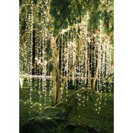Perfect Holiday 300 led Window Curtain Icicle Lights String Fairy Light Wedding Party Home Garden Decorations Warm White Garden Wedding Decorations, Wedding Centerpieces, Wedding Bouquets, Tree Decorations, Festival Decorations, Backyard Decorations, Backyard Trees, Wedding Arrangements, Wedding Window Decorations