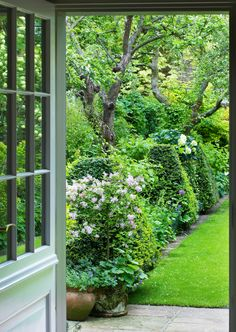 a view through to the garden from the kitchen