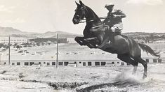 The person riding the horse is İsmet İnönü. Historical Quotes, Historical Pictures, Macro Photography, Animal Photography, Turkey History, Turkish Army, Horse Facts, Picture Description, Ulsan