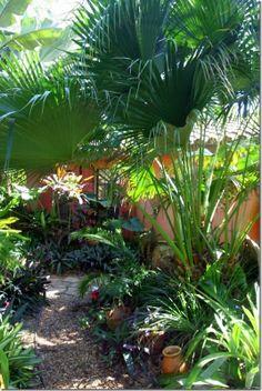 Lush Tropical garden idea.