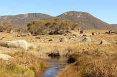 Australian Landscape Photograph by ShareOurTravels on Etsy, $3.00