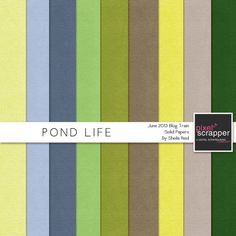 Pond Life Solid Papers Kit by Sheila Reid