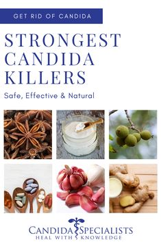 Finding the strongest candida killer is not enough. It also has to be safe. In this guide, we'll cover the best natural antifungals we have found to be both safe & effective for the candida cleanse. Get Rid Of Candida, Candida Symptoms, Anti Candida Diet, Candida Yeast Infection, Candida Cleanse, Cleanse Diet, Cleanse Recipes, Candida Diet Food List, Fungi