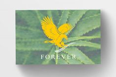Forever Living Business Cards