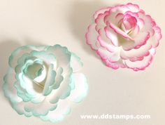 How to make your own Paper Flowers~ I've posted a video on how to make the flower~ www.ddstamps.com