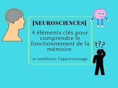 [Neurosciences] 4 éléments clés pour comprendre le fonctionnement de la mémoire et améliorer l'apprentissage 1.L'attention Pour qu'une information entre dans la mémoire, il faut qu'elle soit captée et encodée (associée à des perceptions sensorielles...