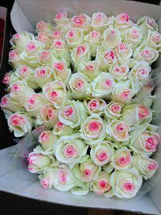 ВАМ мои друзья с любовью... - Zoya Zoya - Google+