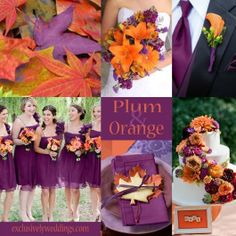 Plum  orange wedding colors, autumn wedding colors. This is pretty much the perfect color palette. I also like the plum and grey in the blog