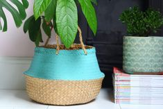 Learn how you can use this Ikea hack to create a pot cover for your houseplants #ikeahack #houseplants  #thriftyhome
