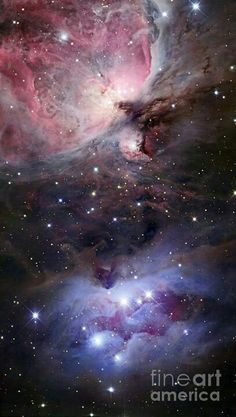 """Robert Gendler – Nebulosas y galaxias Just another world and universe citizen… — """"The sword of orion"""" This image has. Cosmos, Constellations, Ciel Nocturne, Orion Nebula, Constellation Orion, Carina Nebula, Helix Nebula, Andromeda Galaxy, Horsehead Nebula"""