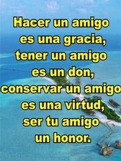 Hacer un amigo es una gracia, tener un amigo es un don, conservar un amigo es una virtud, ser tu amigo un honor