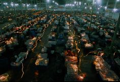 Dounan (early morning): The Flower Market of Yunnan's capital city--Kunming, a world famous flower base and exporter