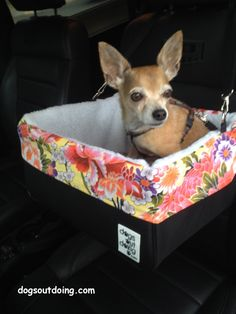 Small Black Dog Car Booster Seat - Summer Fresh Inspired Collection - Flower  - Dogs Out Doing* Available at www.dogsoutdoing.com *model and accessories not included