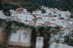 Fotos Boda Benarraba Serrania de Ronda Malaga