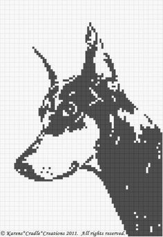 That I created. This graph pattern will make a beautiful heirloom afghan done in single crochet, the afghan or Tunisian crochet stitch, knit, or counted cross stitch onto the background. Tunisian Crochet Stitches, Crochet Stitches Patterns, Crochet Chart, Cross Stitch Charts, Cross Stitch Patterns, Especie Animal, Beginner Crochet Tutorial, Graph Paper Art, Swedish Weaving