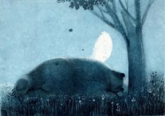 Sleeping bear illustration by Igor Oleinikov