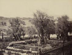 2 апреля 1862. Гефсиманский сад