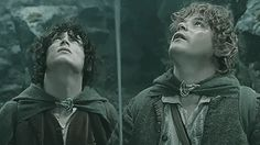 Frodo and Sam. Two of my friends.