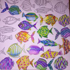 Lost Ocean - Johanna Basford - Inspiration.