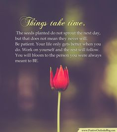 Things take time. The seeds planted do not sprout the next day, but that does not mean they never will. Be patient. Your life only gets better when you do. Work on yourself and the rest will follow…