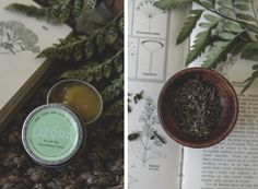TLV Birdie Blog Green Beauty Brand Spotlight : Lizora Skincare