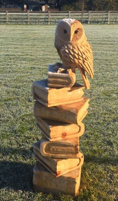 Chainsaw carved owl on books out of spruce on a frosty morning