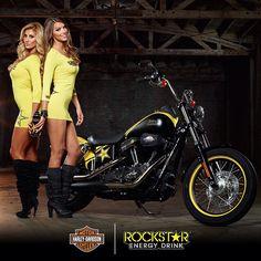 Ride like a Rockstar with this custom Harley-Davidson! Pit Girls, Pin Up Girls, Lady Biker, Biker Girl, Rockstar Energy Drinks, Chicks On Bikes, Promo Girls, Street Bob, Harley Davidson Street