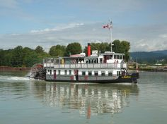 Vancouver Paddlewheeler Riverboat Tours & Cruises - Sightseeing, Dinner & Lunch Cruises, Historical & Special Events Cruises - 30 mins from Vancouver, BC Fraser River, Steamboats, I Want To Travel, Cruise Travel, British Columbia, Vancouver, Tourism, Wedding Venues, Beautiful Places