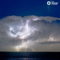 This striking lightning shot was taken at Illawarra in NSW by Darinka Braidotti.  #storm #storms #lightning