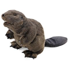 Full Body Beaver Puppet by Folkmanis Puppets at Stuffed Safari Puppet Toys, Puppets, Beaver Animal, Le Castor, Dramatic Play Area, Animal Hats, Snowy Owl, Bear Cubs, Toddler Fun