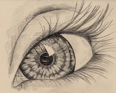 an eye, pencil drawing