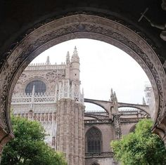 Barcelona Cathedral, Building, Travel, Sevilla, Viajes, Buildings, Destinations, Traveling, Trips