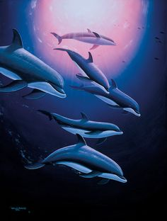 Dolphin Tribe by Wyland - Dolphins in the Ocean
