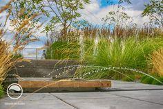 #landcape #architecture #garden #rooftop #meadow #waterg #feature