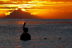 Playas venezolanas Sunset Images, Costa, Dawn And Dusk, Places To Go, Sunrise, Colours, Celestial, Photography, Outdoor