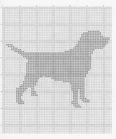 Labrador_001_small2