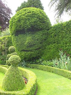 The Green Man topiary