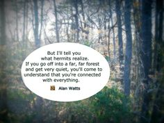 What hermits realize.. - Alan Watts