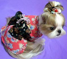 dog kimono gramercy.jpg